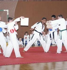 Taekwondo41